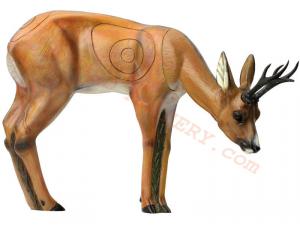 SRT Target 3D Roe Deer VSE Grazing