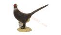 SRT Target 3D Black Pheasant