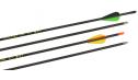 "X-Line ""MACH 3.1"" Carbon arrow"