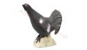 SRT Target 3D Black Cock
