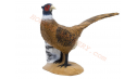 SRT Target 3D Pheasant